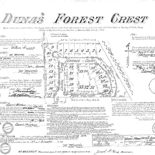 Dunas' Forest Crest.jpg